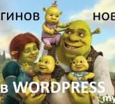 15 плагинов новостей в WordPress